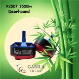 X2507 1500kv(Deerhound)